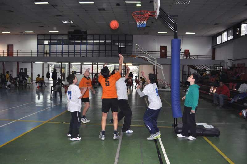 μπάσκετ-δημοτικών3